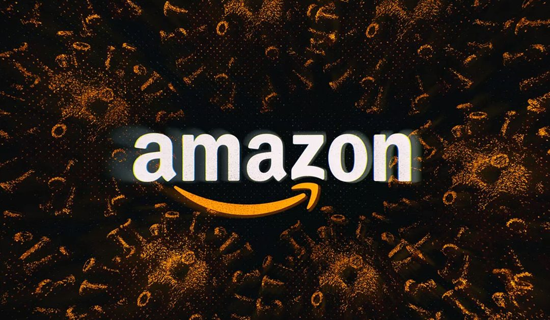 The ways to keep the Amazon business in 2020