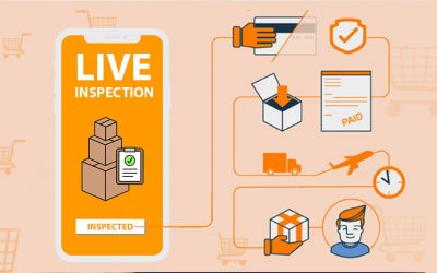 The Role of Quality Control in a Successful Product Launch on Amazon